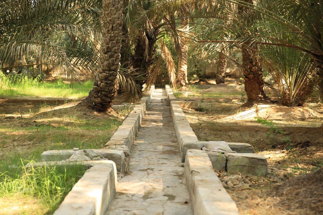 al-ain-oase-water
