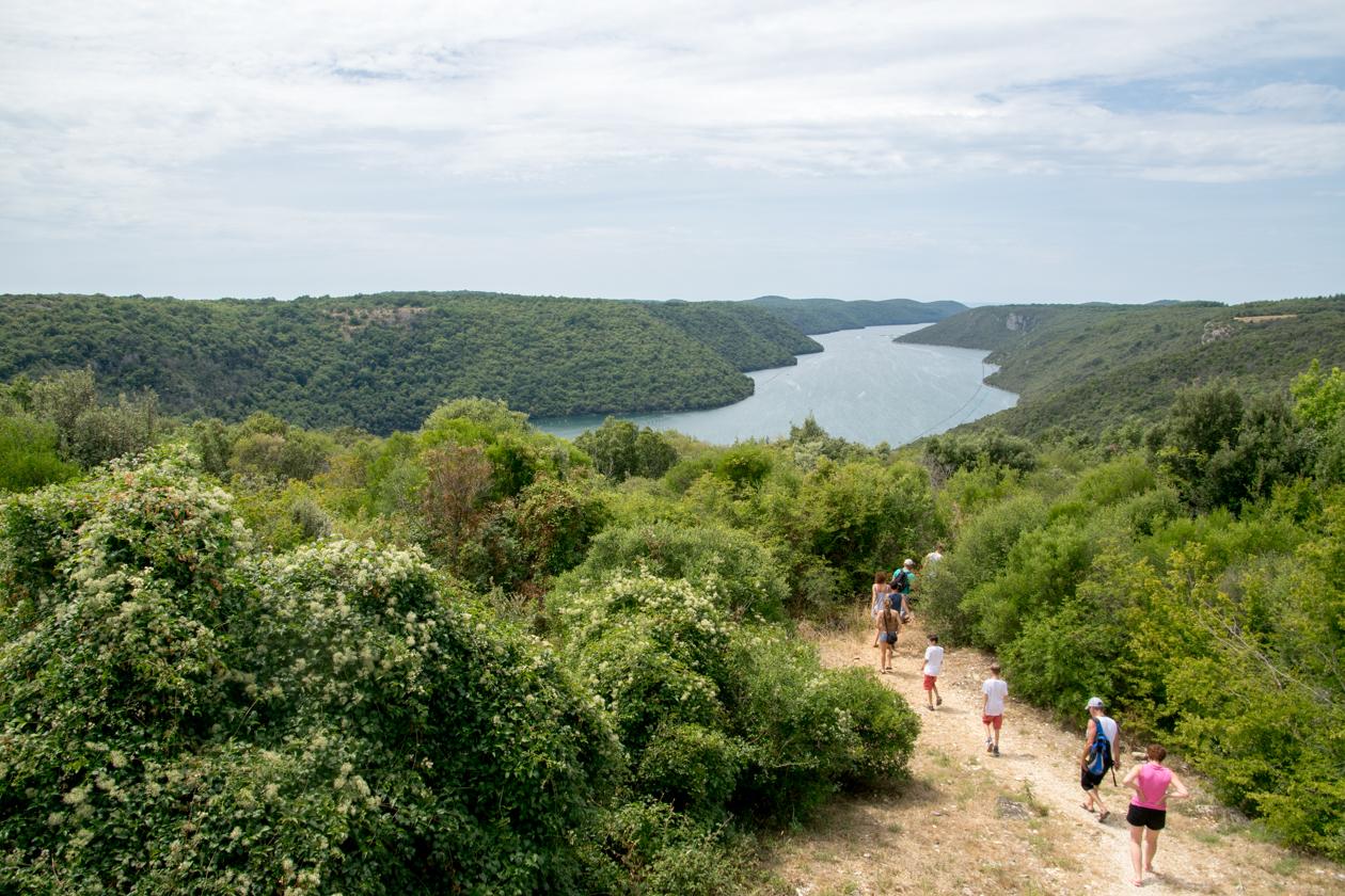 het-natuurgebied-bij-de-limvallei