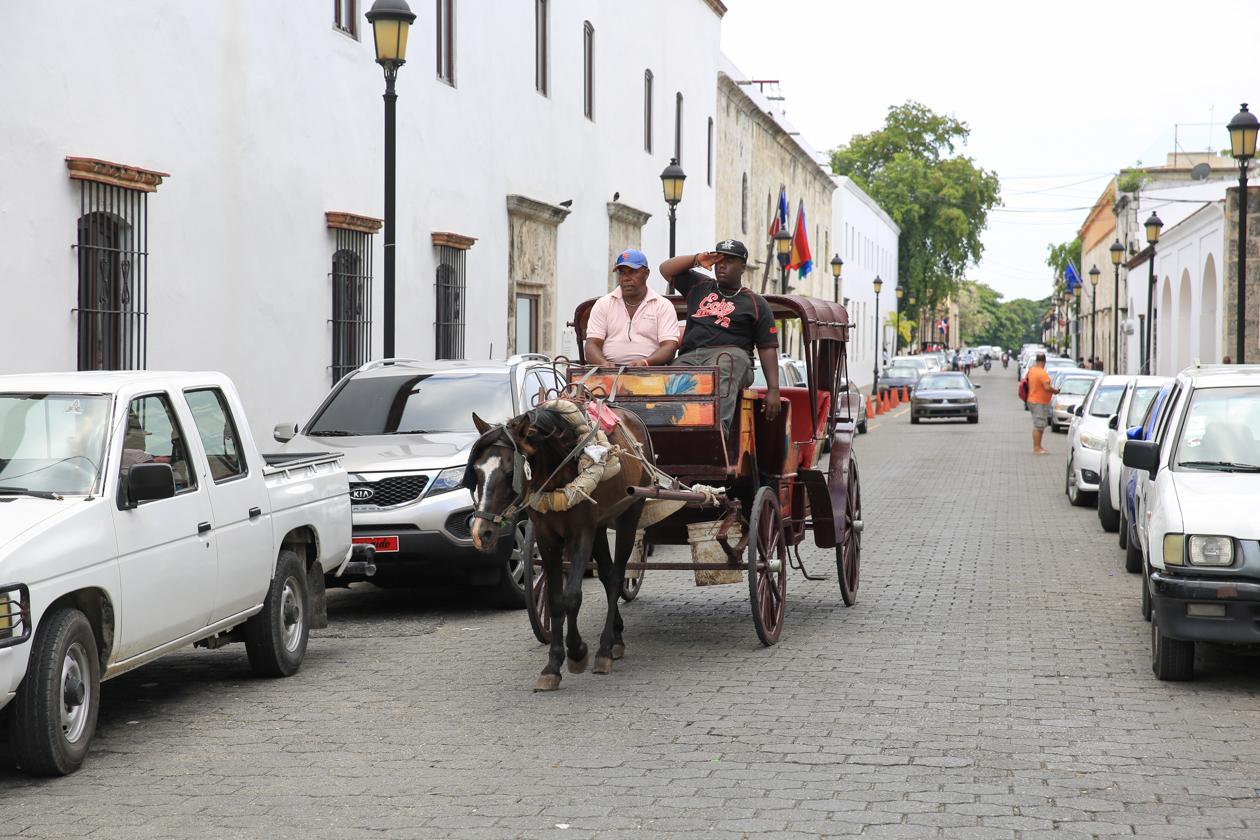 santodomingo-koets