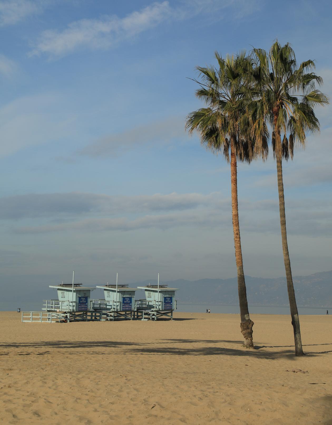 losangeles-strandwachtershuisjes-en-palmbomen