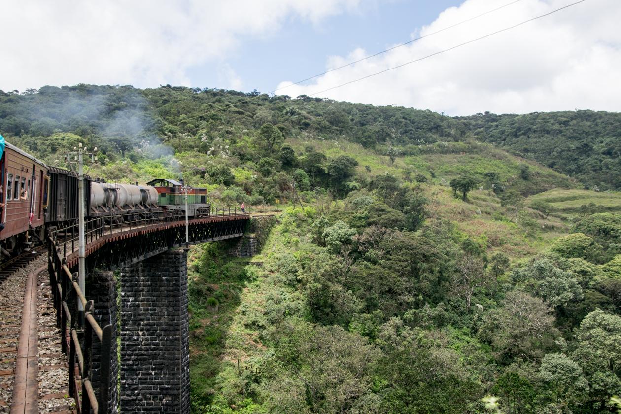 treinrin-sril-lanka-10