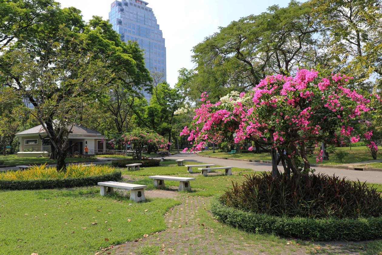 bangkok-lumpini-park