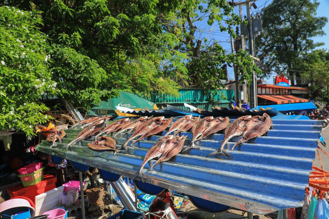 phuket-rawai-gedroogde-vis