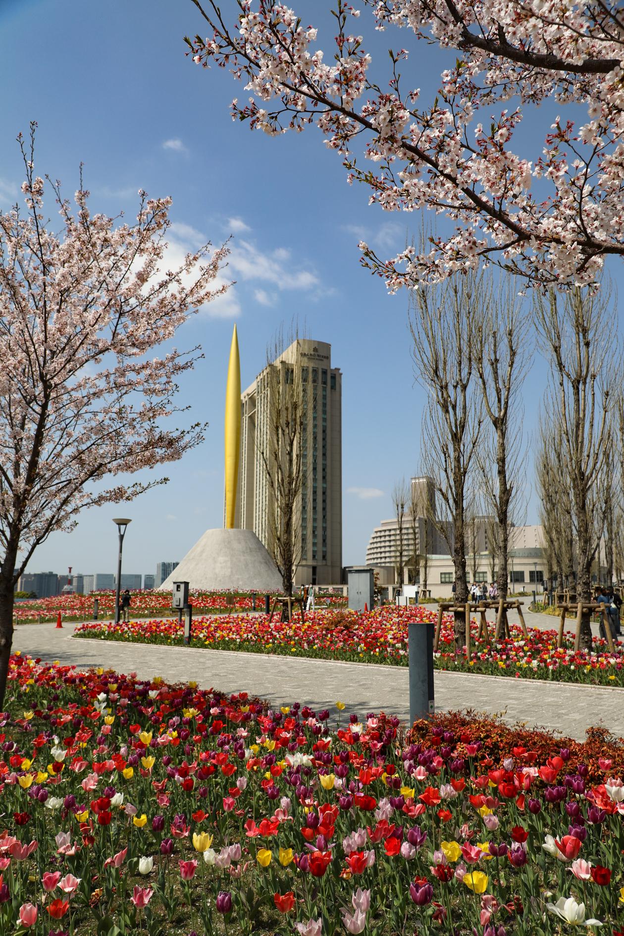 tokyo-tulpen-en-bloesem